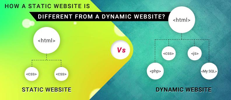 Sự khác nhau và phổ biến của web tĩnh và web động.