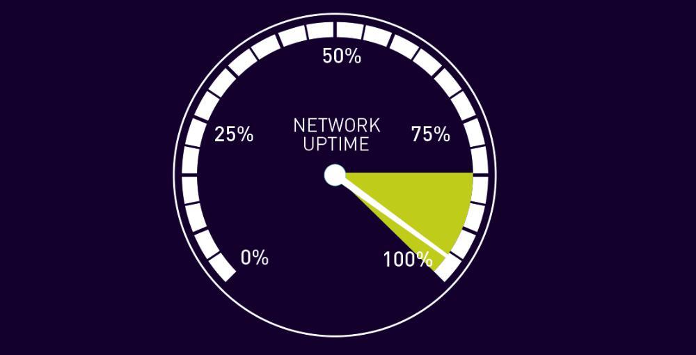 Chất lượng uptime của máy chủ hosting wordpress